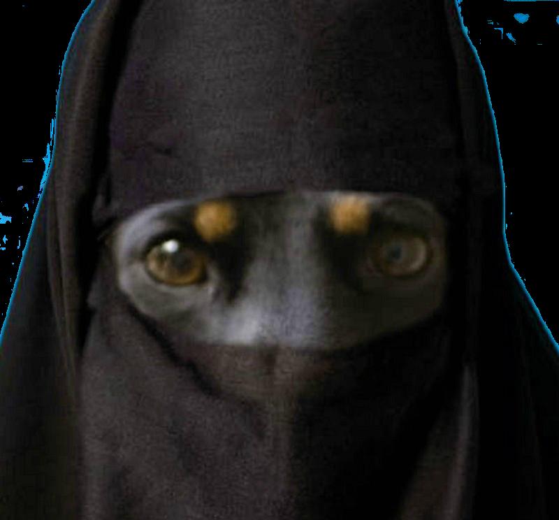 Vox Populi - Page 39 Burqa