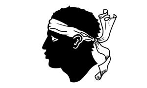 Le FLNC va s'inspirer des indépendantistes Bretons pour des actions «plus douces»